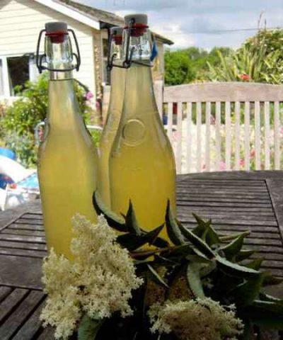 Bodza- és akácvirágból készült limonádé